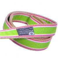 DOG LEAD - TROPICAL SUMMER STRIPES WATERMELON (RIBBON 25mm)